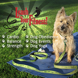 Leash Your Fitness Class & Event Schedule