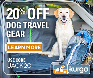 Travel With Your Dog with Kurgo Adventure Products!