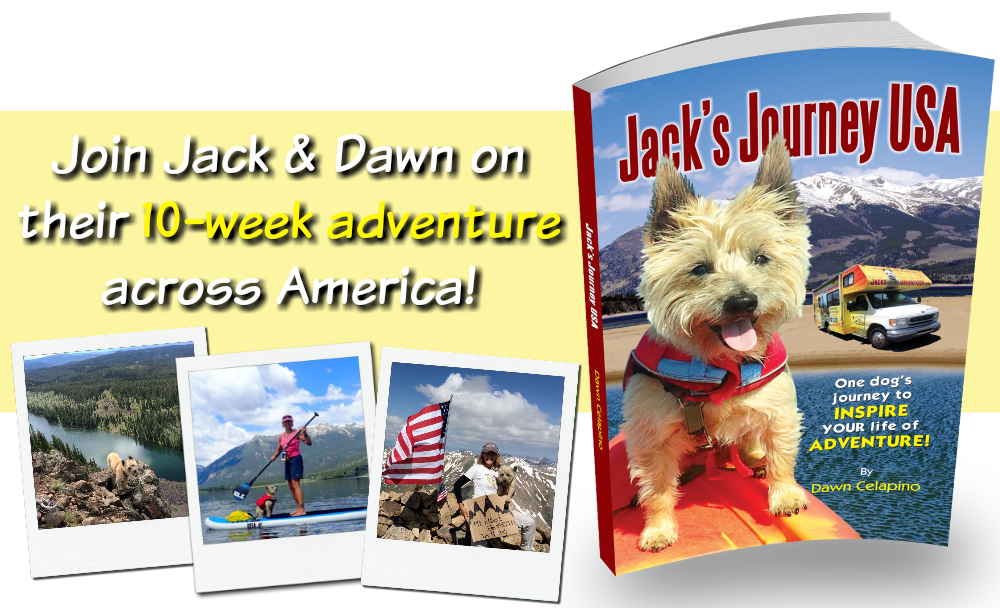Jacks Journey USA -- transparent book and title