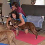 Tuesday Tips:  Stretching Your Dog
