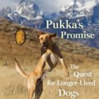 Pukka's Promise Book Review
